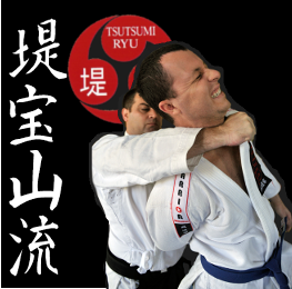 About Jujutsu & Karate Focussed Group Classes