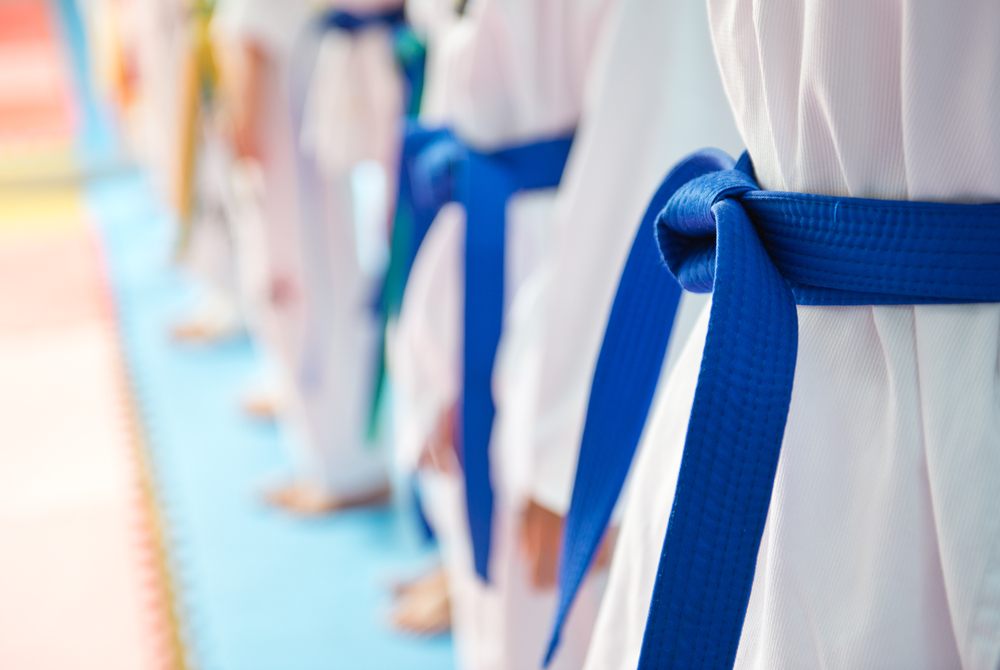 3 Martial Arts Disciplines That Are Based on Jujutsu